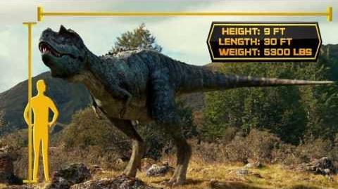 Dino Files Speedy Gorgosaurus Walking With Dinosaurs