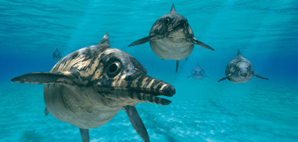 Ophthalmosaurus Walking With Wikis Fandom Powered By Wikia
