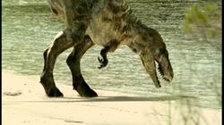 Tarbosaurus CBD Drinking