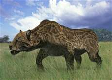 Dinofelis Australopithecus