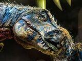 Tyrannosaurus/Arena