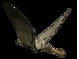 Ornithocheirus