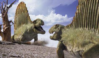 WWM Dimetrodons