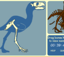 Skeleton Jigsaw