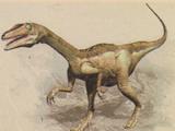 Troodon/Generation 1