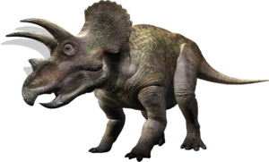 Triceratops WWD
