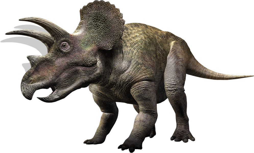 triceratops walking with dinosaurs wiki fandom powered by wikia