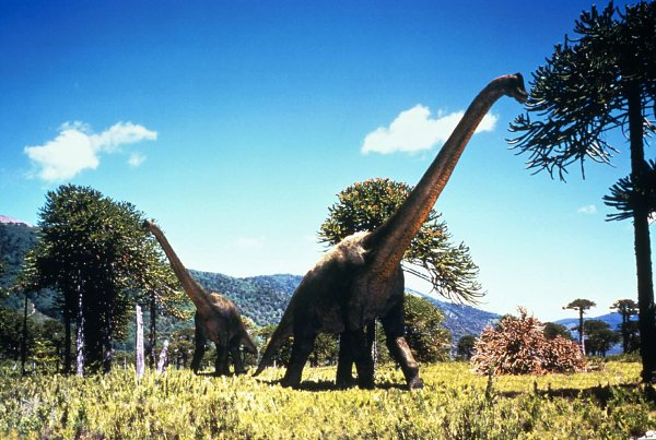 Brachiosaurus Walking With Dinosaurs Wiki Fandom
