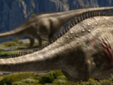 D is For Diplodocus/Gallery