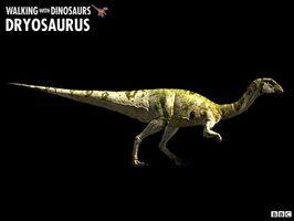 Dryosaurus WWD