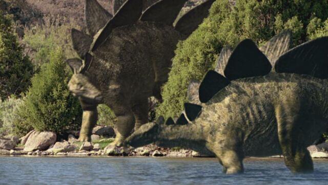 File:Stegosaurus-bigal-1.jpg