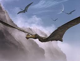 Ornithocheiruswwd