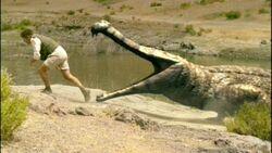 Sarcosuchus and nigel
