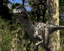 Dromaeosaurus wwd