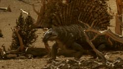 Edaphosaurus prepares to sit, WWMEP02