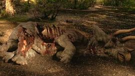 Dead Triceratops WWD06
