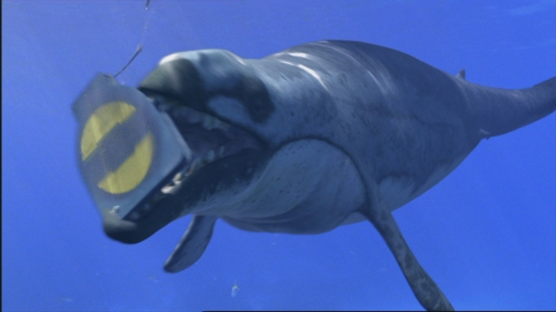 Basilosaurus | Walking with Trilogy Wiki | FANDOM powered by
