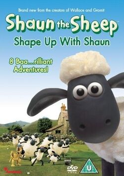 Shape Up With Shaun DVD