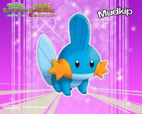 Pokemon-wallpaper-036