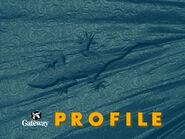 Gateway Profile Wallpaper 2