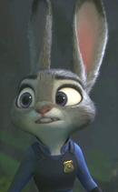 Judy looks everywhere 1