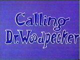Calling Dr. Woodpecker