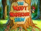 List of The New Woody Woodpecker Show episodes