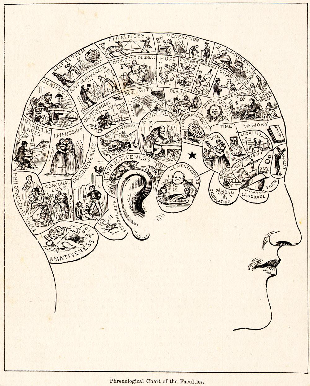 human psychology