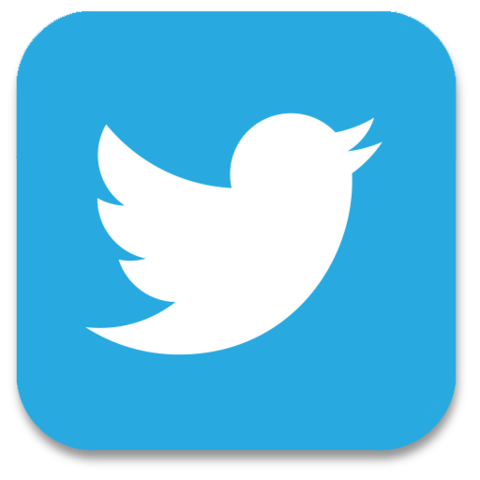File:Twitter-icon.png