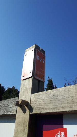 Tankenberg R29