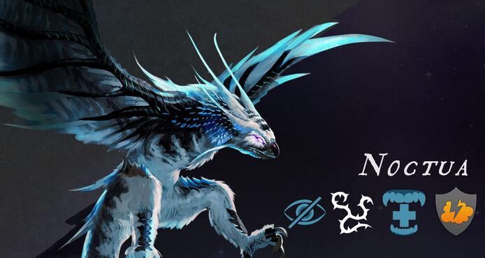 Noctua1