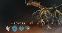 Spindra2