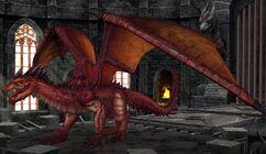 Draco DragonsDen