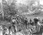Guadalcanal1