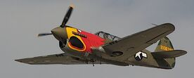 P-40N Parrot Head