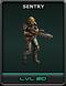 Sentry-MainPic