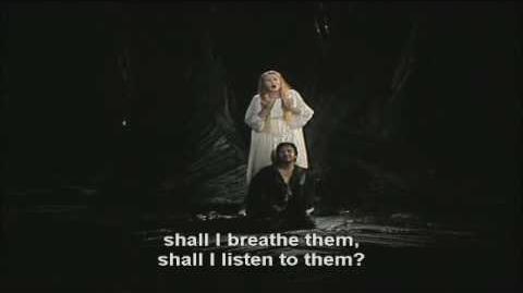 Tristan und Isolde part 29 (ende der oper)