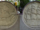 The Griffin and St. Lawrence Memorial Medallions