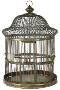 B-rds cage
