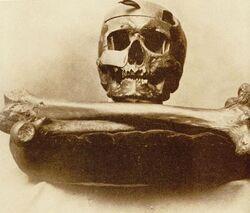 Geronimo skull