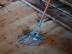 House Peters, Jr.'s Mop