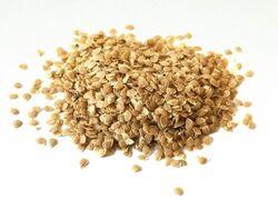 Hzpc-potato-seed-550