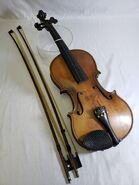 Violin mahogany