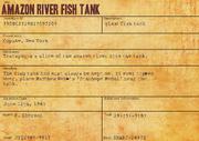 Amazon River Fish Tank