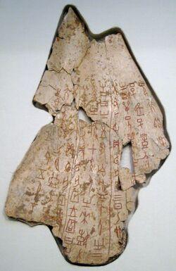 Shang dynasty inscribed scapula