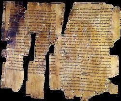 Dead sea scrolls pieces
