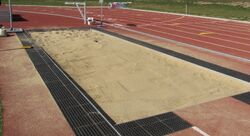 Long20Jum20and20Triple0Jump0Pit1