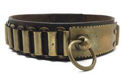 Dog collar 3