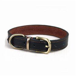 Dog collar 2