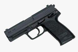 Malik Nettles' Gun
